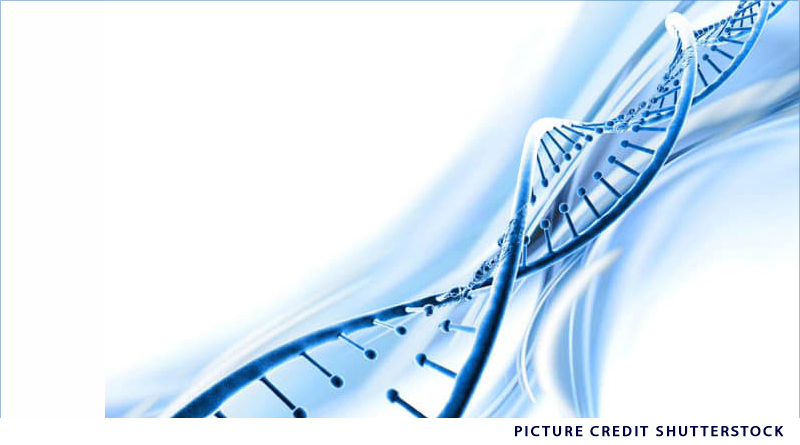 The growth of Clinical Genetics in India